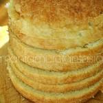Panettone gastronomico, ricetta facilissima senza impasto