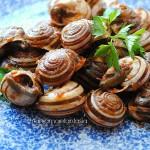 Lumache alla siciliana (crastuna a picchi pacchi)