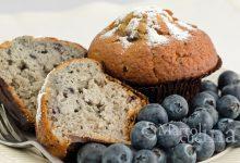 Muffin ai mirtilli, ricetta facile senza burro