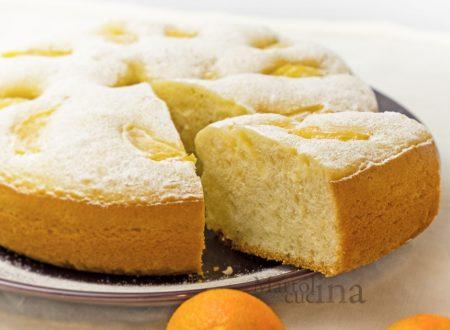 Dolce di mandarini frullati, senza burro