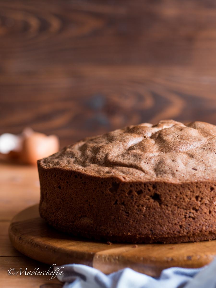Pan di Spagna al Cacao Sofficissimo