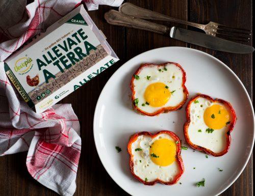 Fiori di uova e peperoni