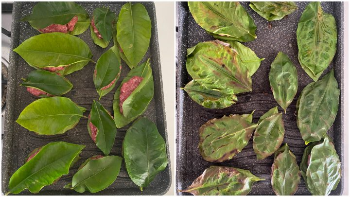 polpette in foglie di limone passo passo 3