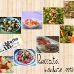 Raccolta insalate estive