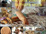 Dolci con la frutta secca - Raccolta ricette