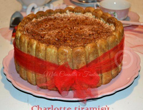 Charlotte tiramisù con scaglie di cioccolato fondente