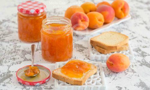 Confettura di albicocche ricetta facile per prepararla in casa