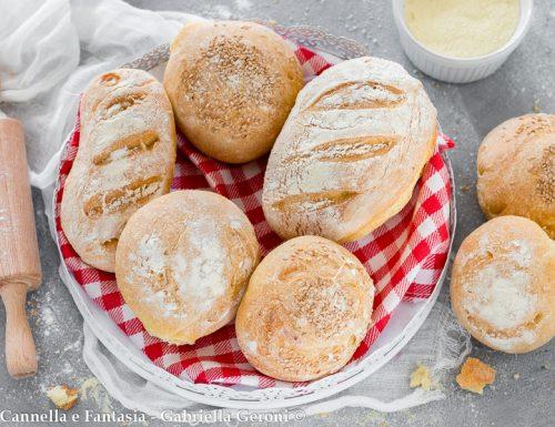 Panini di semola rimacinata ricetta facile con lunga lievitazione