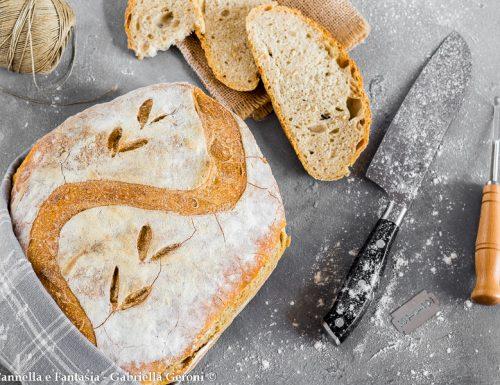 Pane intagliato fatto in casa ricetta senza impasto a lunga lievitazione