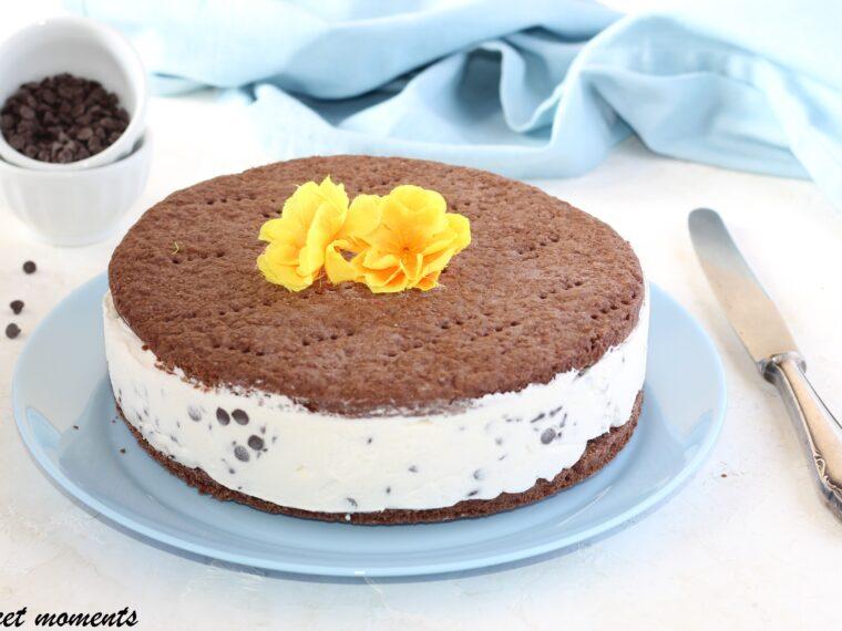Torta gelato con gocce di cioccolato