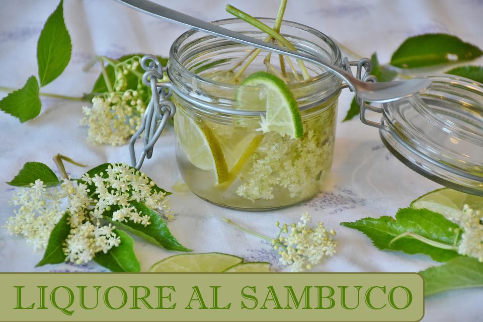 liquore al sambuco