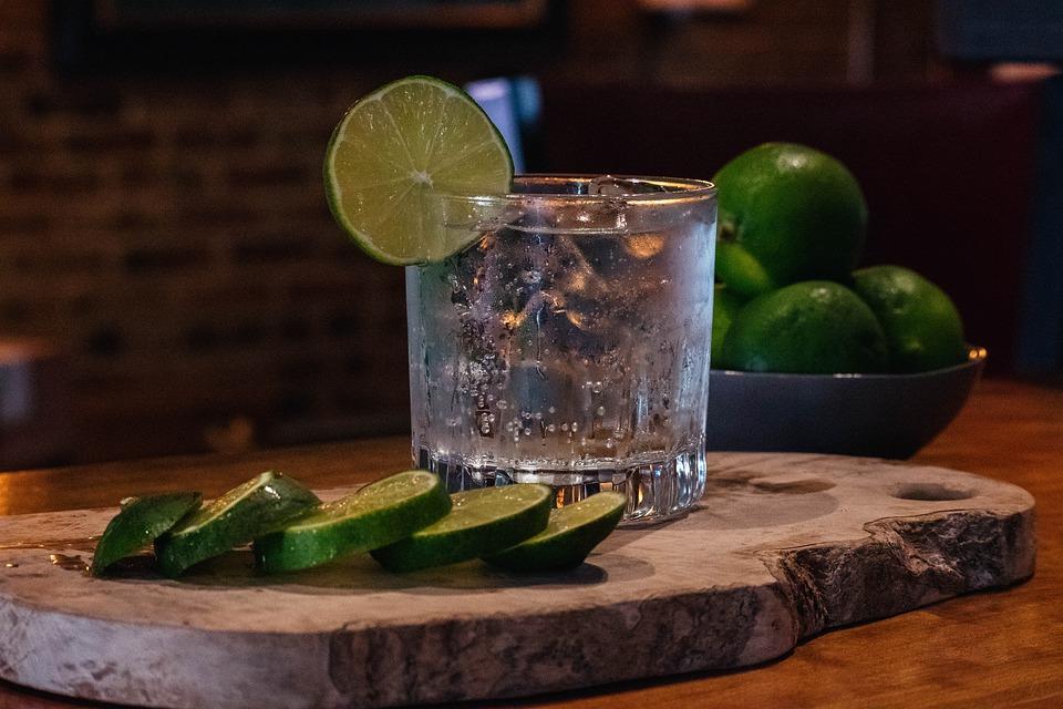 gin fatto in casa