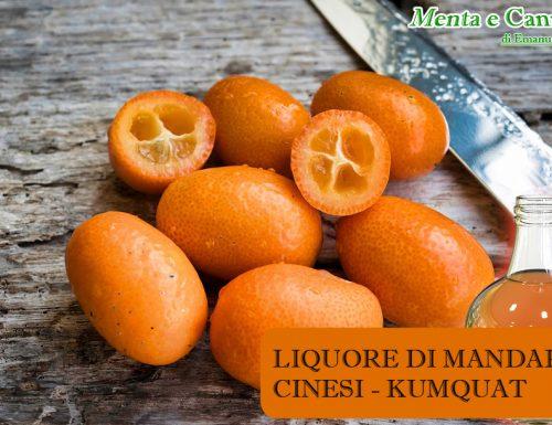 Liquore di mandarini cinesi – ricetta liquore Kumquat