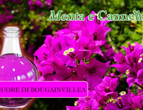 Liquore di Bougainvillea