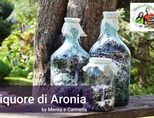Liquore di Aronia