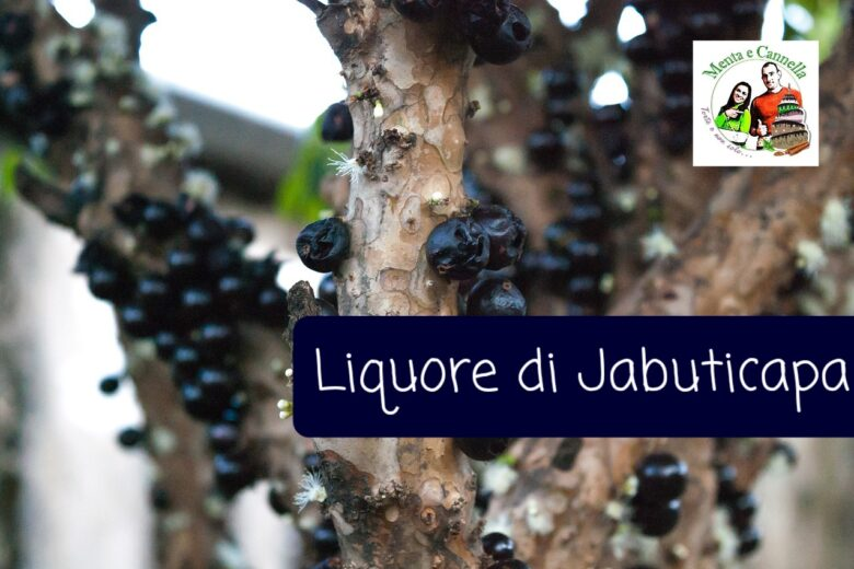 Liquore di Jabuticapa