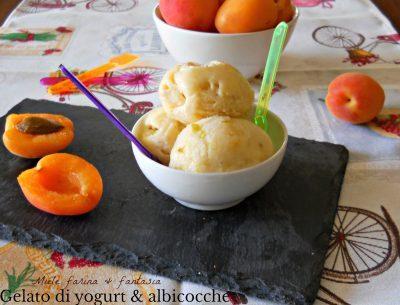 Gelato di albicocche allo yogurt senza gelatiera