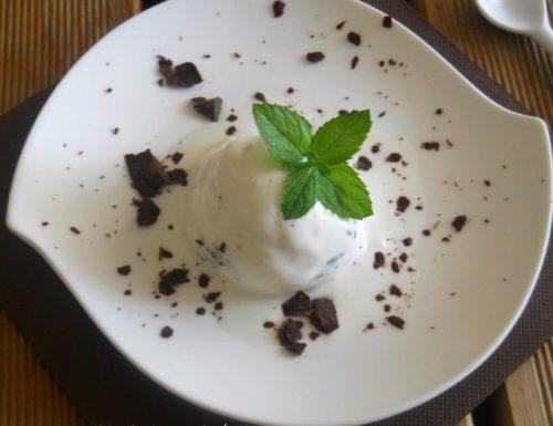 Gelato alla menta e cioccolato senza uova e gelatiera