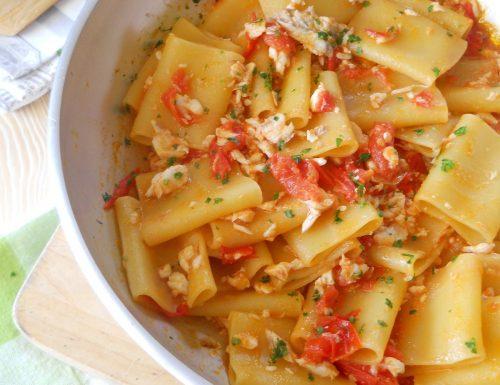 Paccheri con spigola e pomodorini