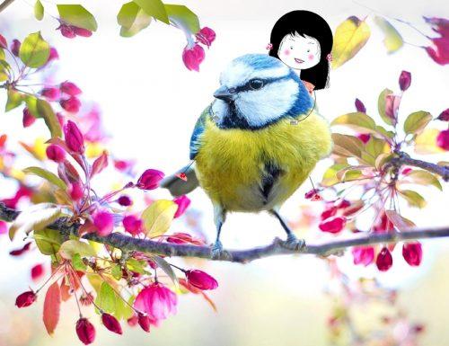 Sulle ali della primavera, Frasi di incoraggiamento