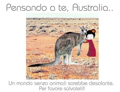 Australia, un pensiero alla terra che brucia ancora