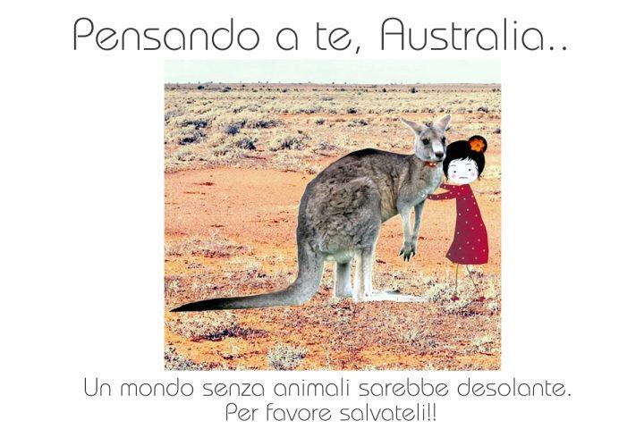 Australia, un pensiero alla terra che brucia