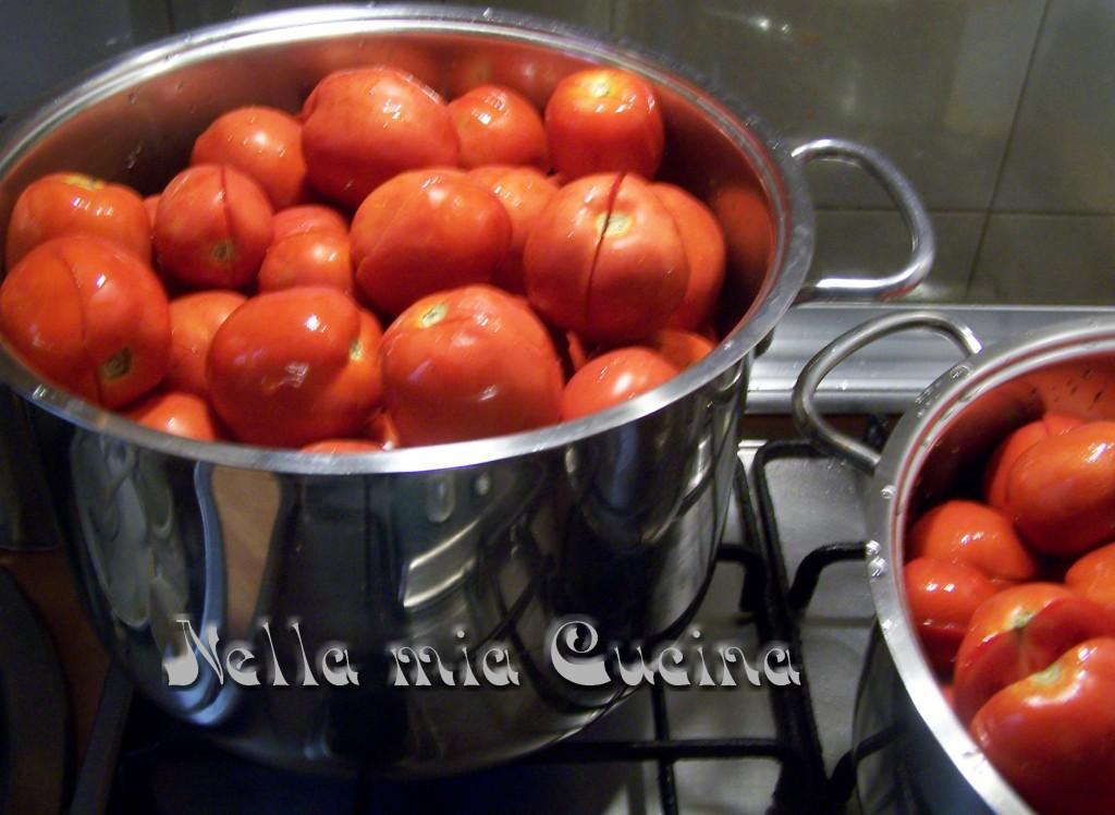 Prima di tutto selezionare i pomodoro , e lavarli in abbondante acqua . Fare un taglio ad ogni pomodoro e metterli in capienti pentole per la bollitura coperti da un coperchio , aggiungendo un mestolo di acqua