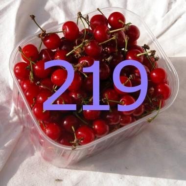 diario di una dieta - Giorno 219, Mangia senza Pancia