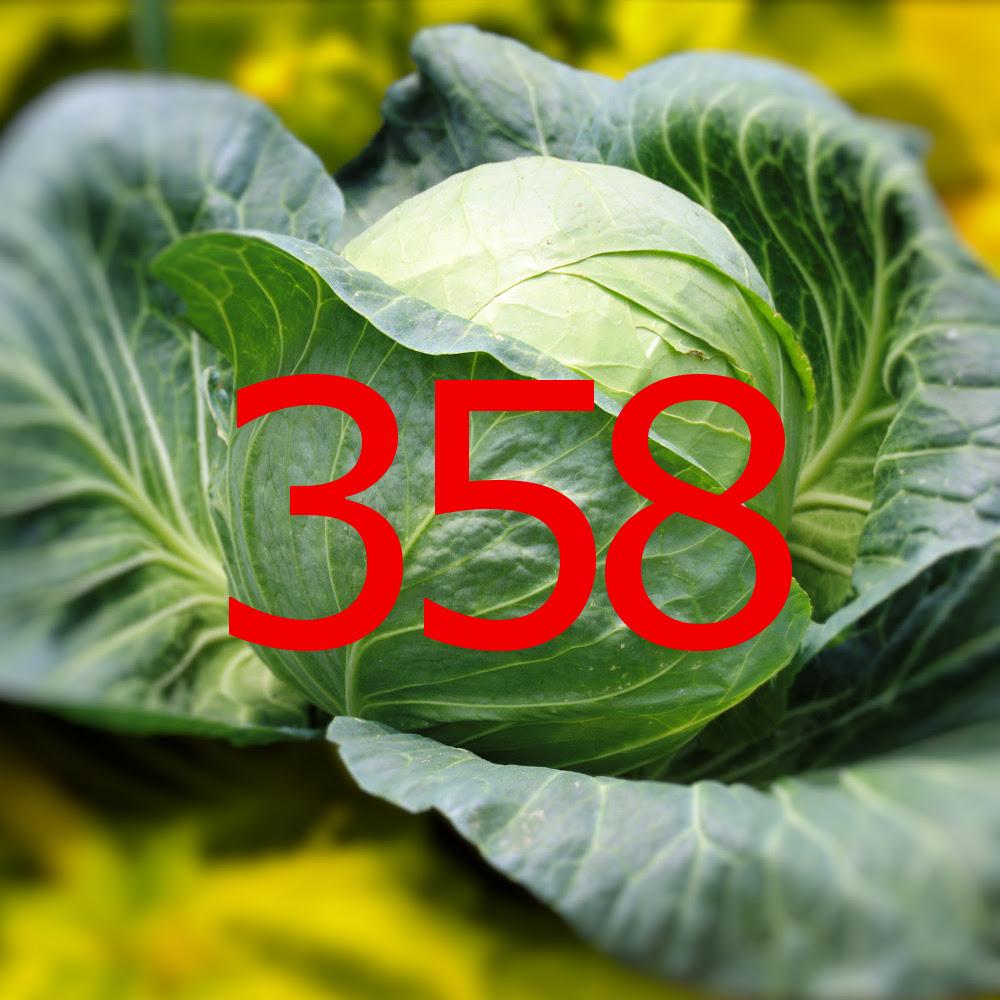 diario di una dieta - Giorno 358, Mangia senza Pancia