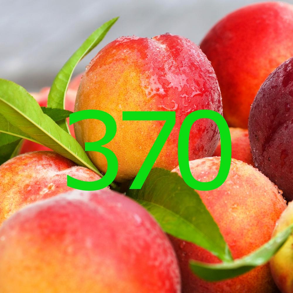 diario di una dieta - Giorno 370, Mangia senza Pancia