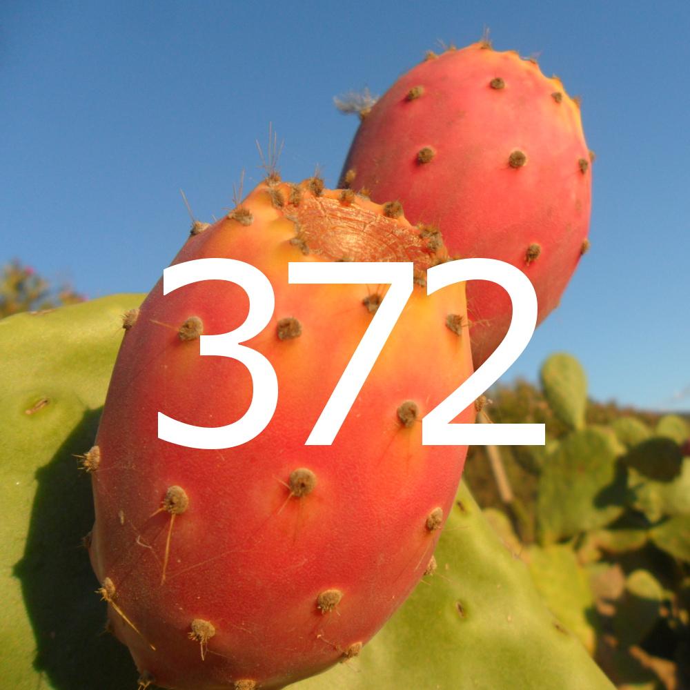 diario di una dieta - Giorno 372, Mangia senza Pancia