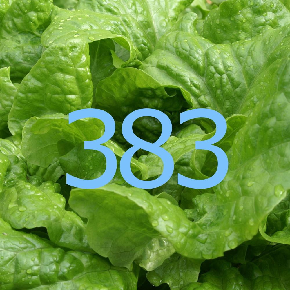 diario di una dieta - Giorno 383, Mangia senza Pancia