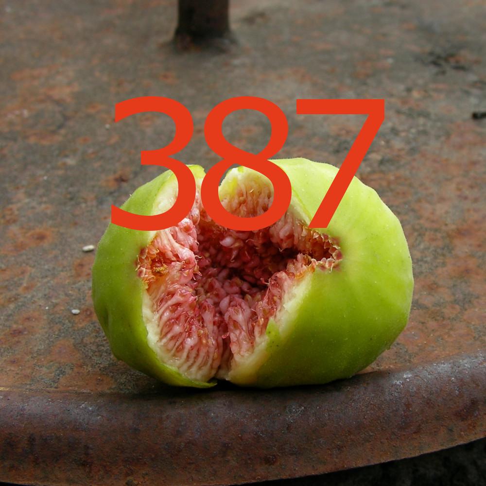 diario di una dieta - Giorno 387, Mangia senza Pancia