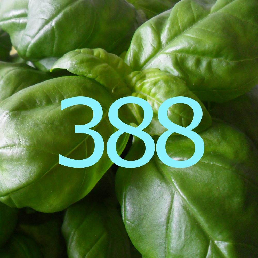 diario di una dieta - Giorno 388, Mangia senza Pancia
