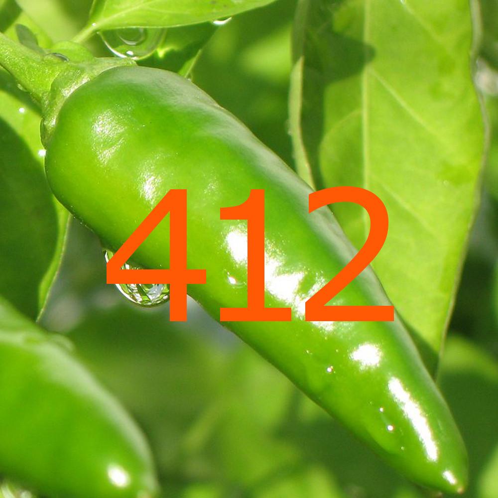 diario di una dieta - Giorno 412, Mangia senza Pancia