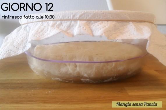 Pasta madre solida, giorno 12, diario di Cirilla, Mangia senza Pancia