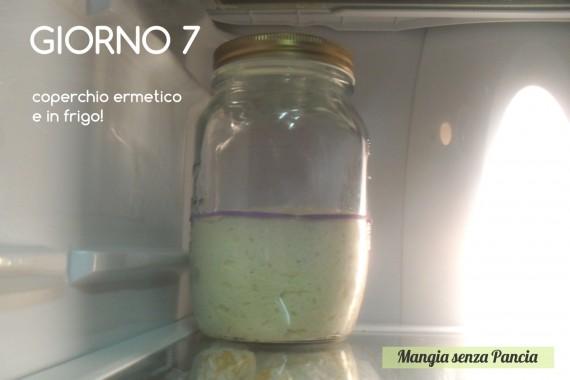 Pasta madre solida, giorno 7, diario di Cirilla, Mangia senza Pancia