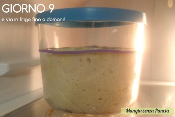 Pasta madre solida, giorno 9, diario di Cirilla, Mangia senza Pancia