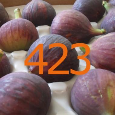 diario di una dieta - Giorno 423, Mangia senza Pancia