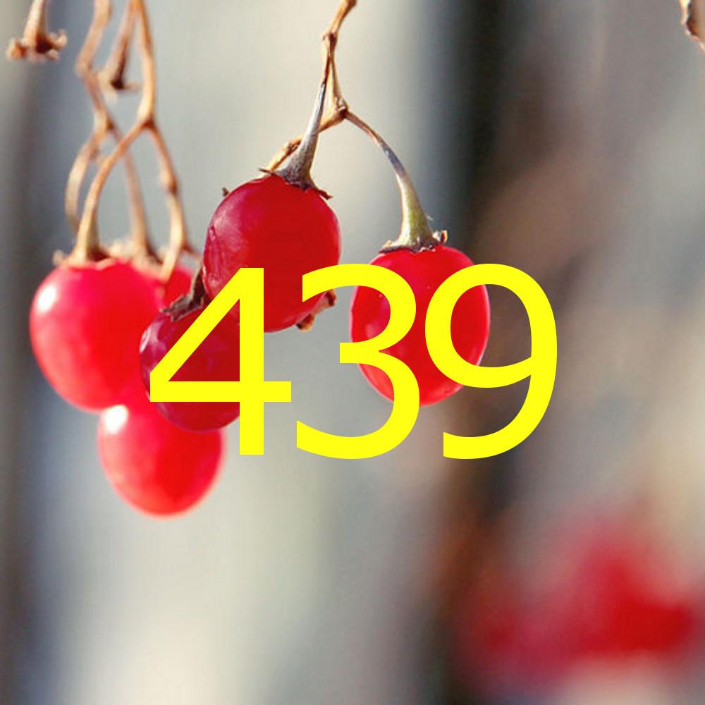 diario di una dieta - Giorno 439, Mangia senza Pancia