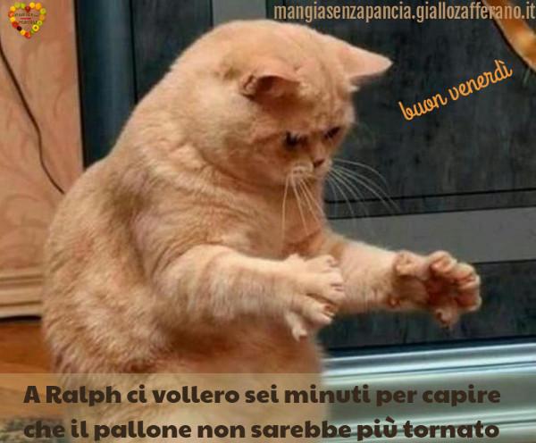 gatto Ralph, buon venerdì, diario di una dieta - Giorno 418, Mangia senza Pancia