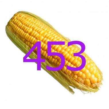 diario di una dieta - Giorno 453, Mangia senza Pancia