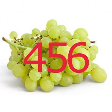 diario di una dieta - Giorno 456, Mangia senza Pancia