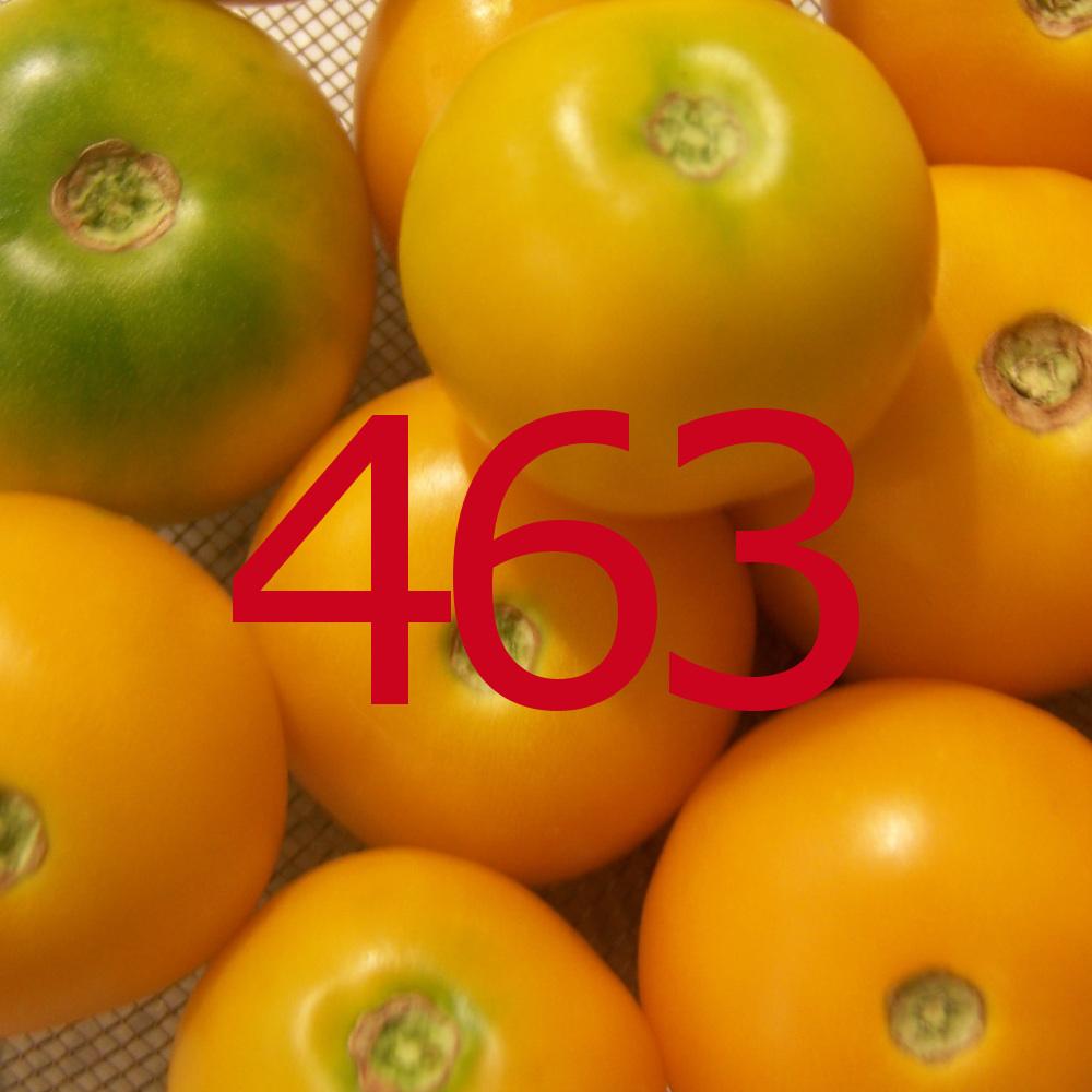 diario di una dieta - Giorno 463, Mangia senza Pancia