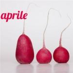 Diario della dieta mese 9, aprile 2013