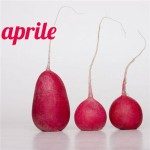 Mantenimento dieta mese 6, aprile 2014