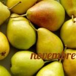 Diario della dieta mese 4, novembre 2012