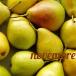 Mantenimento dieta mese 1, novembre 2013