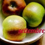 Diario della dieta mese 2, settembre 2012