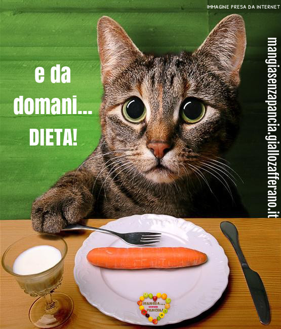 ho sempre fame perch   mangia senza pancia